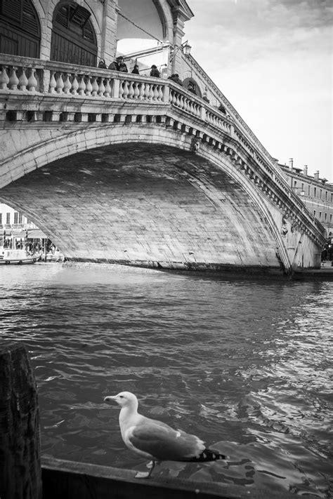 Images Gratuites : mer, eau, noir et blanc, pont, rue, la