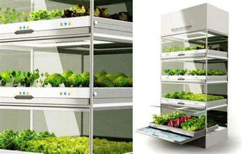 homegrown food innovations
