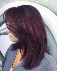 plum hair color ideas best 25 plum hair ideas on plum hair colour