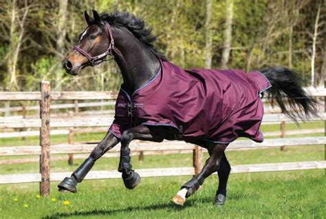 amigo turnout rugs best price horseware amigo 6 lightweight turnout rug turnout multipurpose rugs rugs