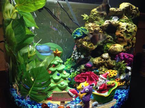 90 best fish tanks fish bowls fish sea life images