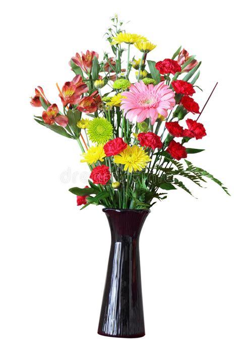 fiori nel vaso fiori nel vaso fotografia stock immagine di isolato
