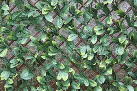 artificial hedge wall coverings artificial hedge