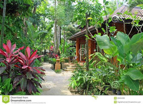 life on maple grove cottage tropical home decorating ideas tropical villa luxury cottage home architecture india