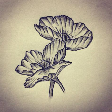 tattoo flower drawn poppy flower tattoo sketch drawing tattoo ideas by