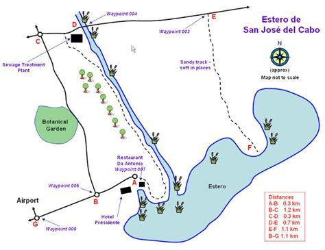 san jose cabo estuary map 1000 images about travel on restaurant