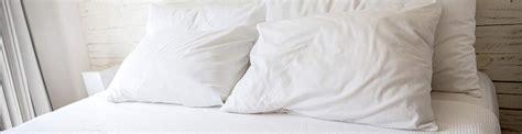Woher Kommen Bettwanzen by Bettwanzen Bisse Schutz Und Bettwanzenmittel