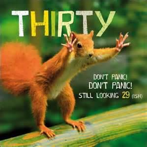 red squirrel 30 birthday still looking 29 163 2 50 a
