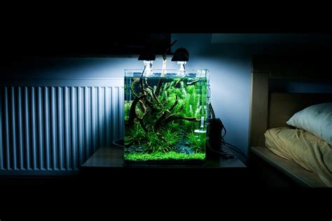 nano aquarium beleuchtung dennerle nano cube 10l led beleuchtung nano cube 30l