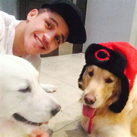 alexis sanchez dogs instagram photo arsenal s alexis sanchez all smiles despite