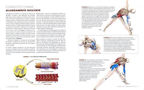anatoma para vinyasa flow anatomia del flusso vinyasa e le posizioni in piedi dello yoga