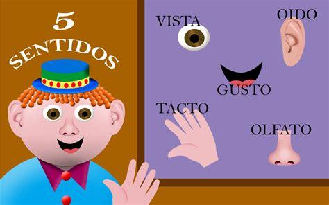 imagenes infantiles sobre los sentidos top imagenes del sentido del tacto wallpapers