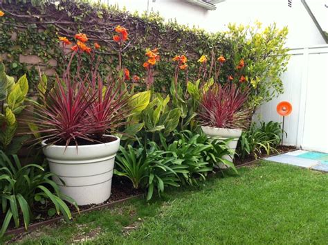 San Diego Home Design Remodeling Show bright cordylines and cannas tropical landscape los