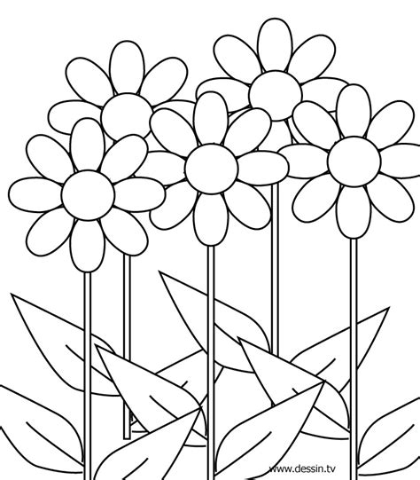 Coloring Pages For Girls 10 And Up Az Coloring Pages Flower Coloring Pages For 10 And Up Printable