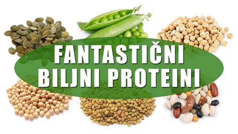 v proteini fantastični biljni proteini