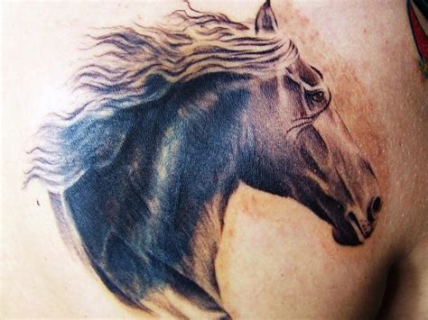 horse head tattoo designs 30 awesome tattoos ideas and designs for you