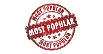 most best my most popular blog posts on terminology did you miss it
