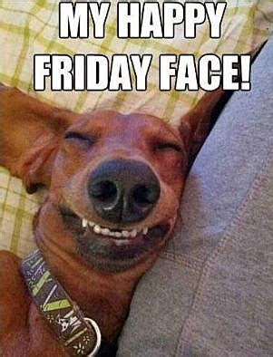 Sexy Friday Memes - funny friday memes enjoy and share