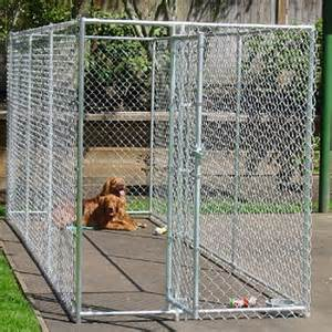 Garage Dog Kennel Dog In Cage Drawing Images Amp Pictures Becuo