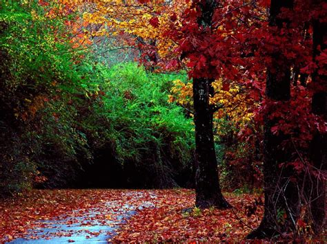autumn landscapes 2 wallpapers colorful fall landscapes wallpapers host2post