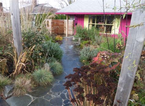 planting your rain garden timber press
