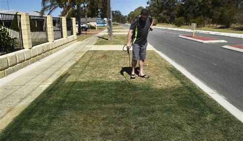 spray painters bunbury grassed up mandurah business spray painting lawns green