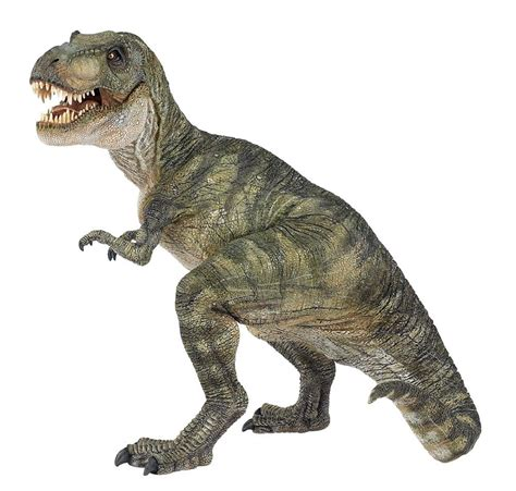 rex the t rex dinosaurs history dinosaurs pictures and facts