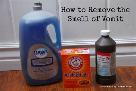 how to clean vomit from sofa 17 best ideas about vomit cleaner on pinterest clean