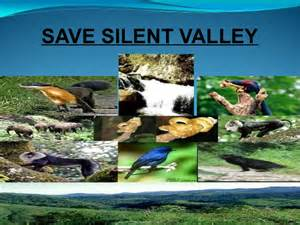 save silent valley