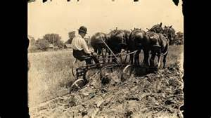 Agricultural Revolution Essay by Agricultural Revolution Essay
