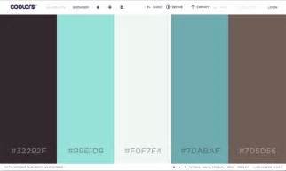 color scheme website understanding color schemes choosing colors for your