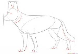 how to a german shepherd how to draw a german shepherd step by step drawing tutorials