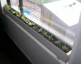 grow vegetables indoors winter