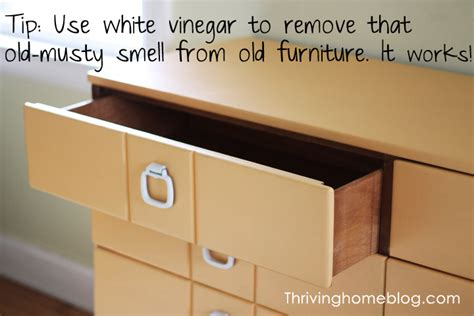 how to take the musty smell out of furniture