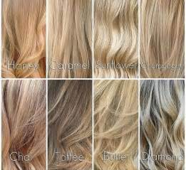 different shades of hair color best 25 shades ideas on color