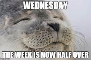 Meme Wednesday - wednesday meme google search wednesday memes pinterest