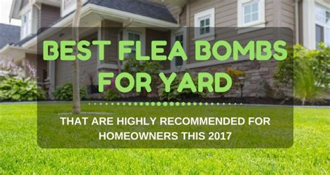 best flea bombs for yard that are highly recommended for
