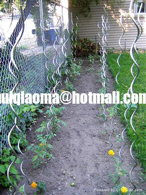 climbing plant support mesh spiral plant stakes tomato stakes climbing plant support mesh