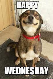 jokey wednesday meme   smile   face
