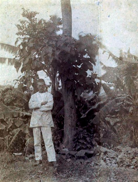illuminazioni rimbaud biografias e curiosidades biografia de arthur rimbaud