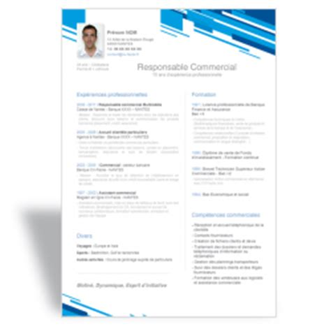 Resume Template Trackid Sp 006 by Modele Cv Commercial B To B