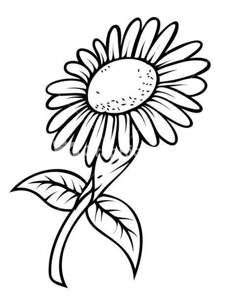 sun flower template sunflower drawing template search sunflowers