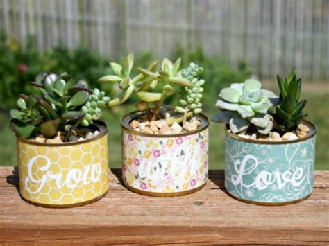 Planters Without Holes by It S Possible To Grow Succulents In Pots Without Drainage Holes Because They Require Less Water