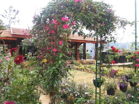 Ella Flower Garden Resort Ella Flower Garden Resort Picture Of Ella Flower Garden Resort Ella Tripadvisor