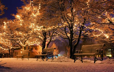 Bench Lights Christmas Park Wallpaper Hd World Cities Photos For