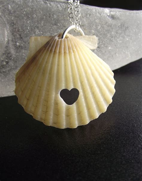 19 best ornamentals images on seashell jewelry