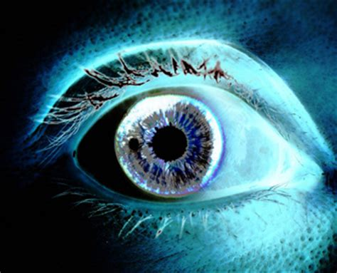 anthony daniels vanderbilt two receive research to prevent blindness grants