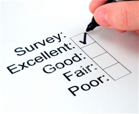 survey says data driven marketer s guide to surveys