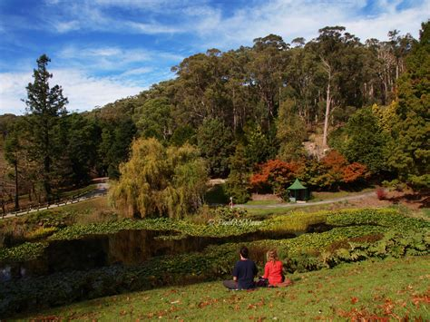 Mt Lofty Botanical Gardens Mt Lofty Botanical Gardens Adelaide By Paula Mcmanus