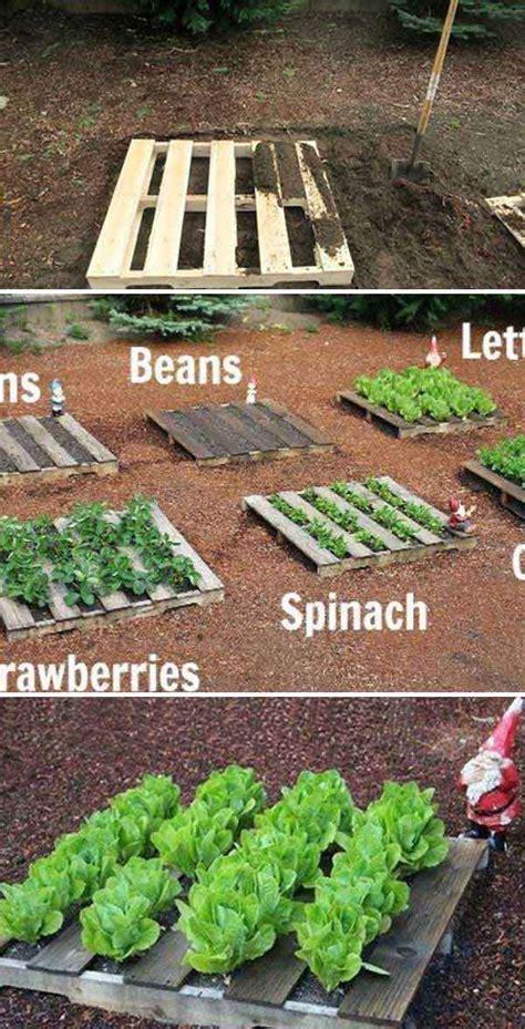 pallet vegetable garden the best garden ideas and diy yard projects kitchen